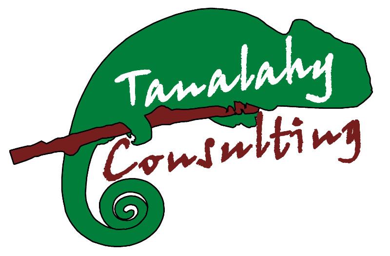 Tanalahy Consulting